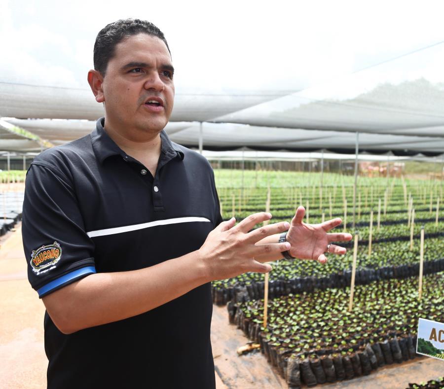 Germán Negrón, gerente de Puerto Rico Coffee Roasters, indicó que uno de los proyectos en el tintero es la ampliación de un vivero en Jayuya, con capacidad para 400,000 plantas, que debe estar listo este mes. (GFR Media) (semisquare-x3)
