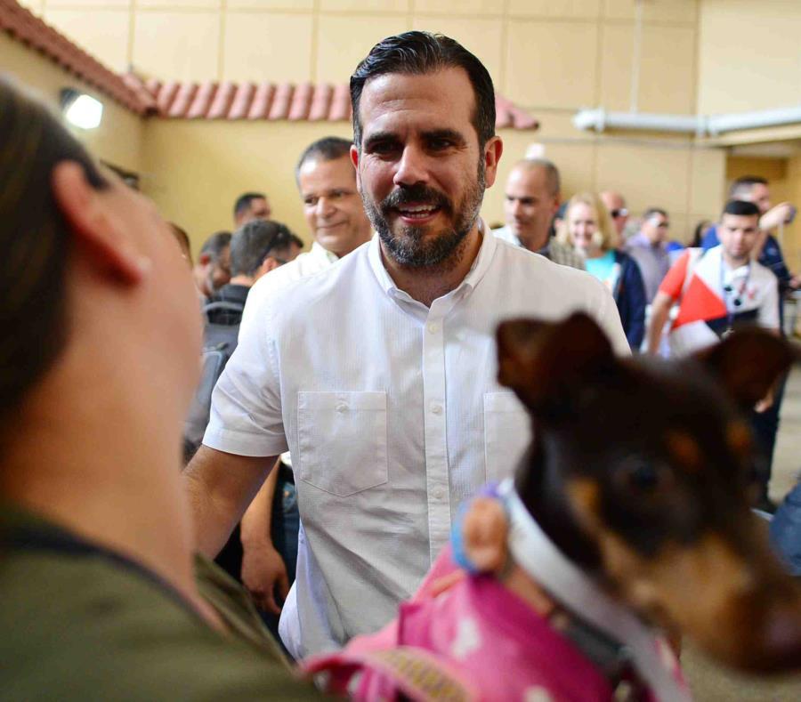 Ricardo Rosselló Nevares participó hoy de una clínica de esterilización de mascotas. (semisquare-x3)