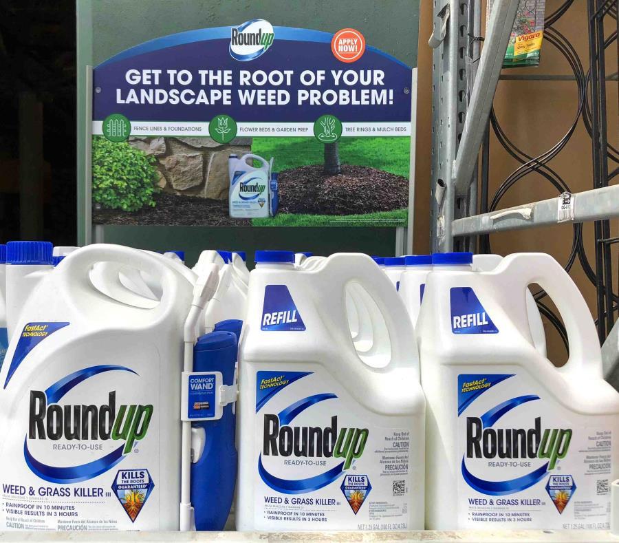 Dos demandas en California han vinculado el herbicida Roundup con el cáncer. (AP) (semisquare-x3)