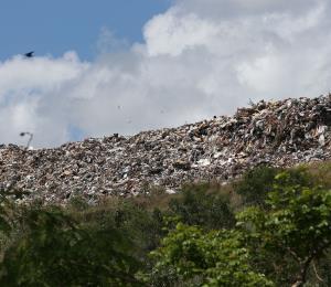 Cómo evitar que nos arrope la basura