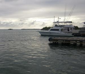 Aguaceros pasajeros afectarán porciones del este de Puerto Rico