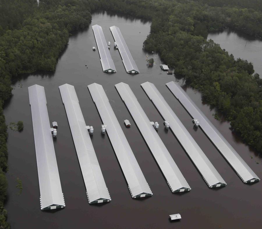Las altas cantidades de precipitación depositadas por la tormenta tropical Florence causaron inundaciones en múltiples regiones de ambos estados. (AP / Steve Helber) (semisquare-x3)