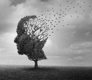 Candesartán es candela para el Alzheimer