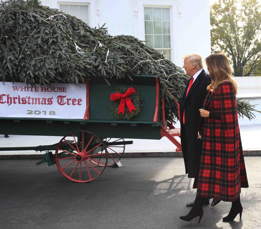 Donald Trump recibió el árbol junto a su esposa, Melania. (AP) (semisquare-x3)