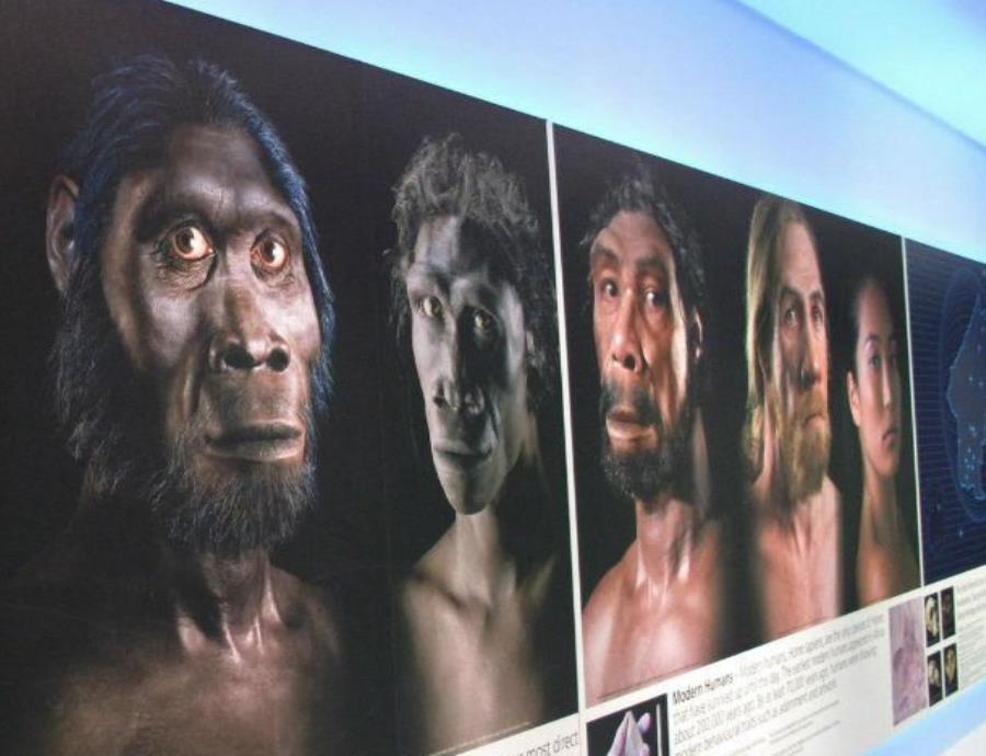 La ciencia revela cómo será el rostro humano en el futuro (semisquare-x3)