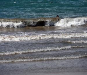 María y su marea ciclónica