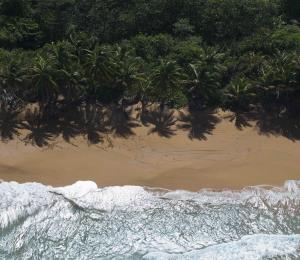 Las playas como fuente de riqueza limpia