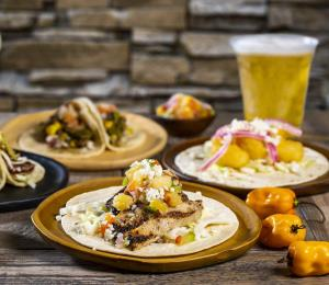Busch Gardens celebra Festival de la Cerveza