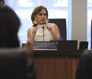 Zoé Laboy: intento de jaque en el ajedrez de Wanda Vázquez