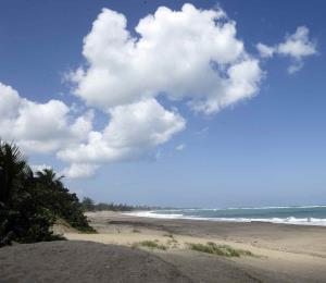 Conservar las dunas es construir un buen futuro