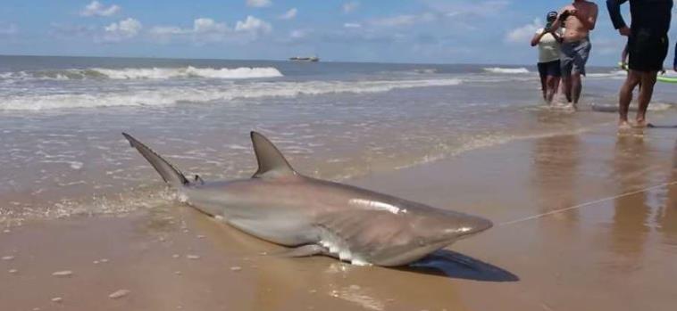 El incidente ocurrió en la isla de Galveston, por la costa de Texas en Estados Unidos. (Imagen tomada de Facebook) (horizontal-x3)