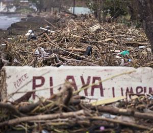 Un vasto impacto ambiental