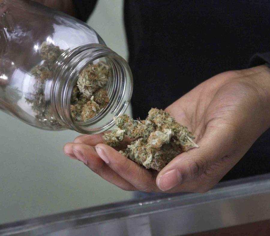Estos recibieron sus permisos durante la convención de Puerto Rico MedCann.Biz, donde también se discutieron temas innovadores sobre tratamientos con cannabis. (AP) (semisquare-x3)