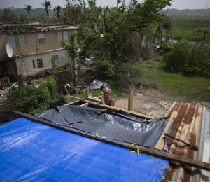 ¿Cómo se solicitan los toldos de FEMA?