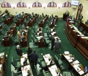La legislación cameral después del huracán