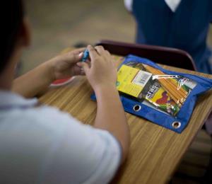 La Educación Puertorriqueña en Visión 3E