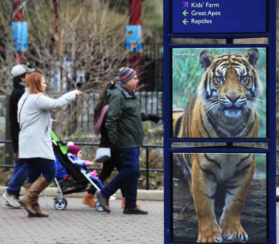 Smithsonian's National Zoo en Washington. (semisquare-x3)