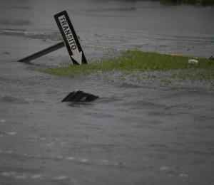 Necesaria una economía a prueba de huracanes