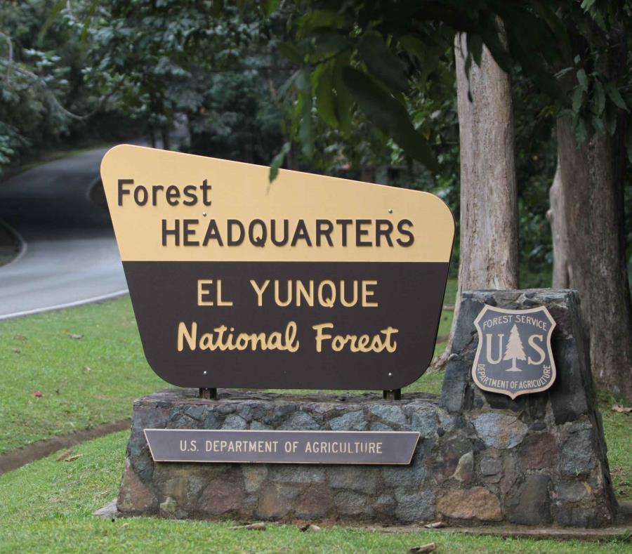 El centro de  Visitantes del bosque tropical El Yunque permanece cerrado desde el huracán María. (GFR Media) (semisquare-x3)