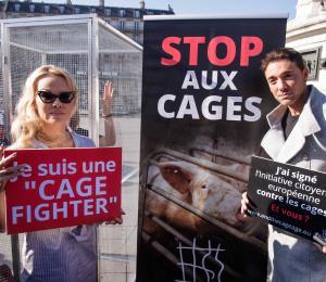 Pamela Anderson está en contra de la cría de animales en jaulas