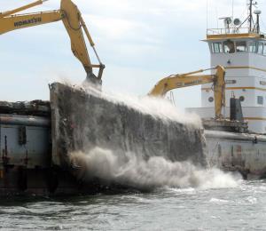 El proyecto de un vertedero submarino