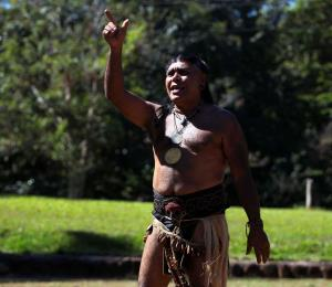 Nuestros orígenes indígenas