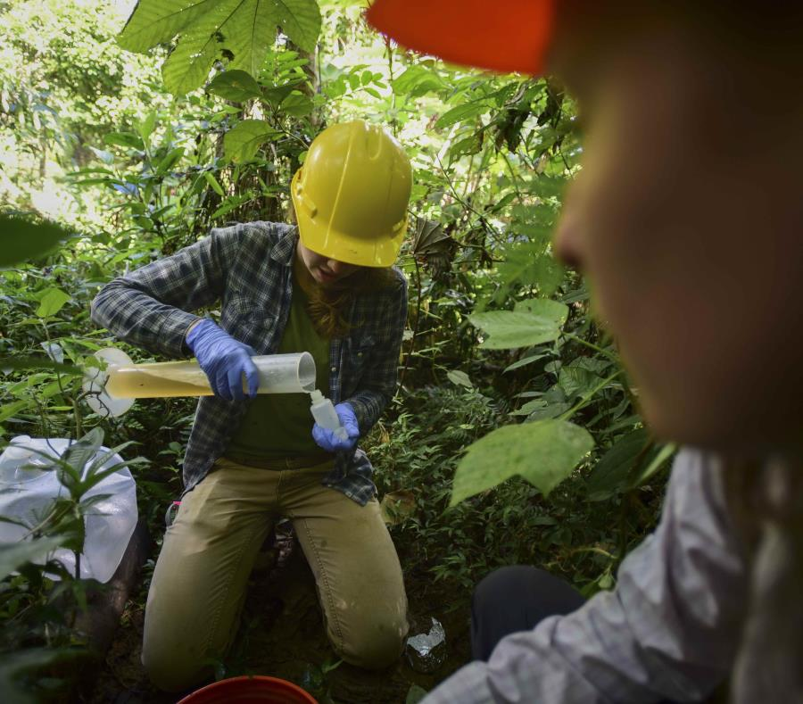 Las becarias Carolina May (izquierda) y Rosanise Odell recogen muestras de agua de uno de los terrenos experimentales de El Yunque. (AP Foto/Carlos Giusti) (semisquare-x3)