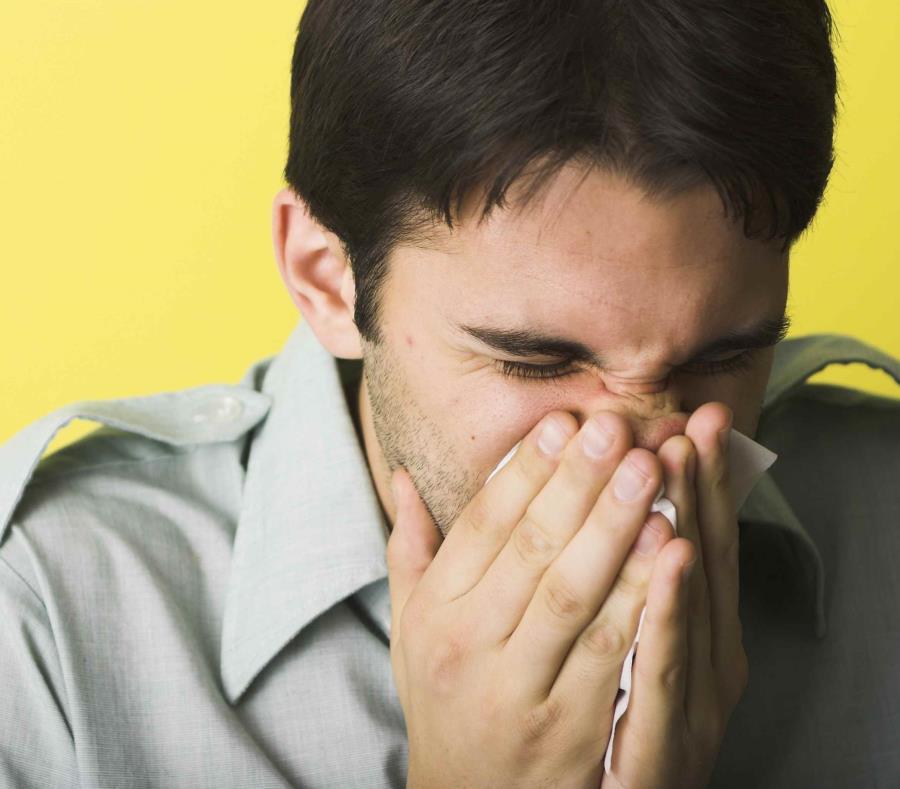 El experto indicó que muchas personas le han compartido en las redes sociales -en la página Alergia a Hongos- que se sienten enfermas o con asma. (Getty Images / Nick Schlax) (semisquare-x3)