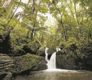 Turismo sostenible para un nuevo Puerto Rico