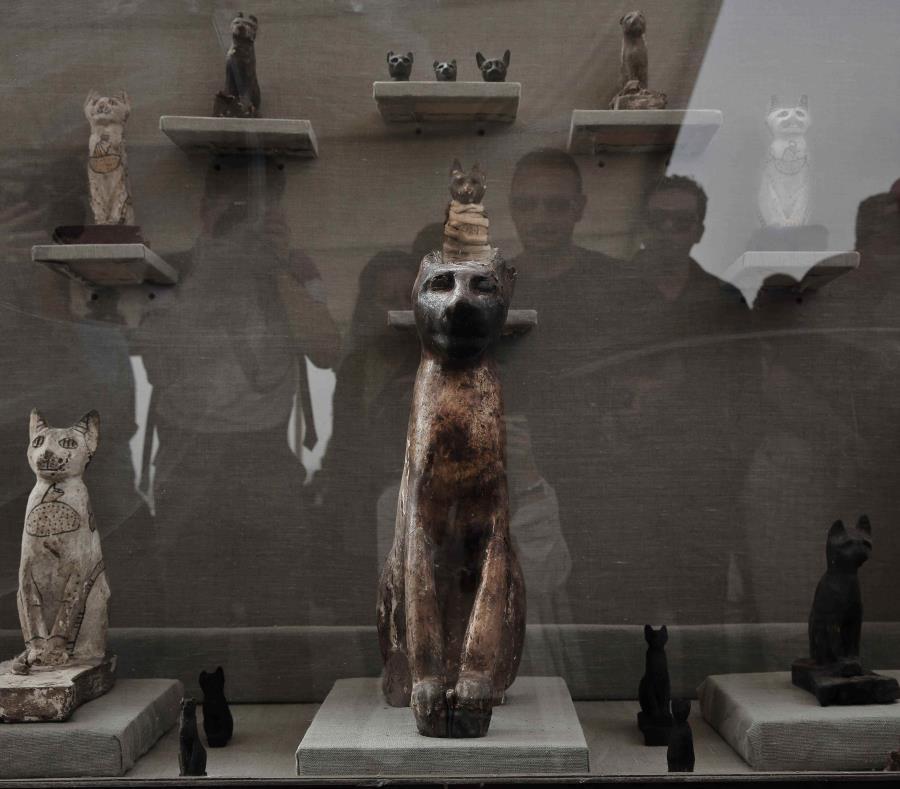 Egipto devela siete tumbas de faraones con gatos y escarabajos momificados