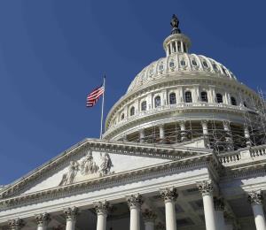 La unidad de propósito ante la reforma contributiva federal
