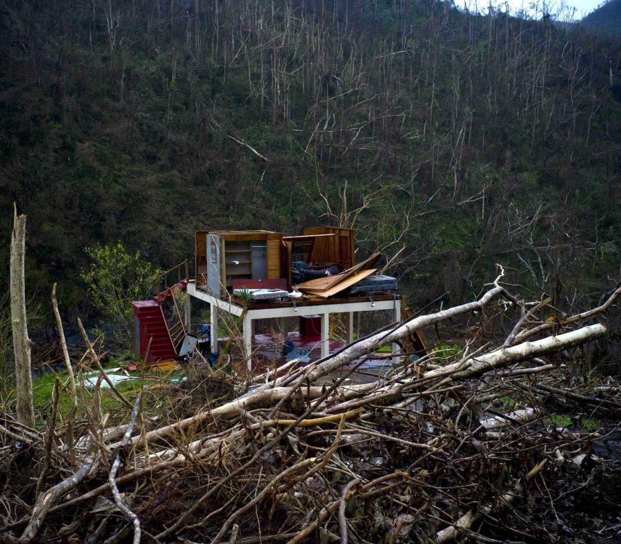 La meta de los voluntarios es reparar un centenar de casas. (GFR Media) (semisquare-x3)