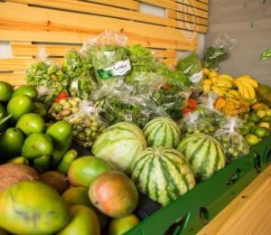 En alza el sector local de agricultura orgánica