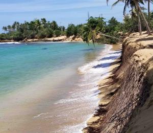 El amurallamiento de las playas