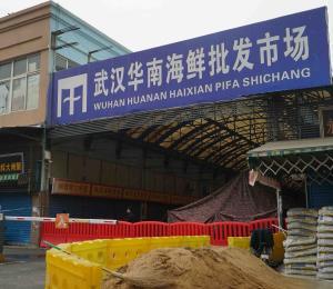 Cancelan torneo de la gira profesional de tenis femenino en China por el coronavirus