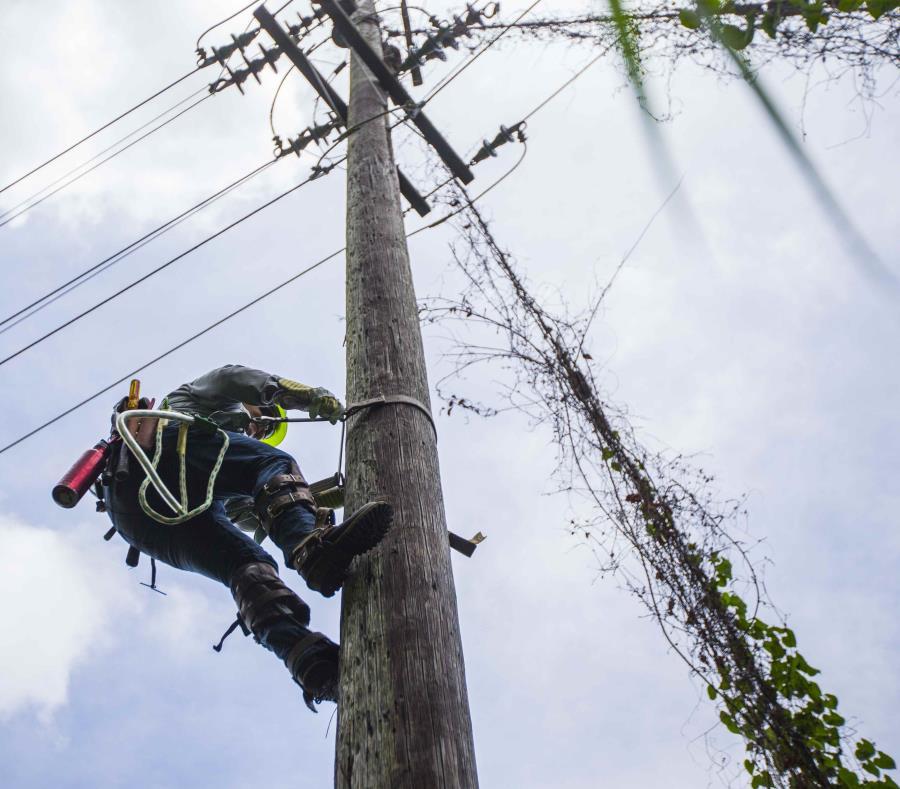 El huracán María dejó la mayoría de la infraestructura eléctrica del país hecha añicos. (GFR Media) (semisquare-x3)