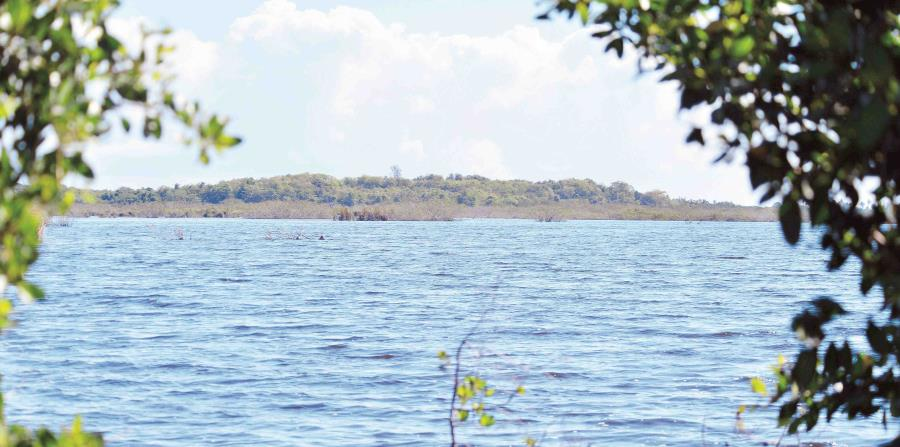 Vista de la Reserva Caño Tiburones (horizontal-x3)
