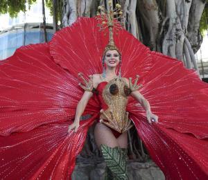 Miss Puerto Rico: gallos, flor de maga y coquí