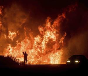 Un devastador incendio forestal