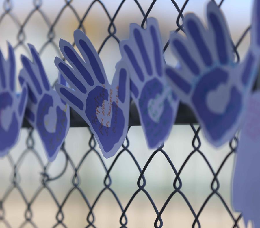 El proyecto lo que e propone es enmendar la Ley para la Prevención e Intervención con la Violencia Doméstica (semisquare-x3)