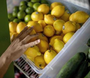 Consejos para evitar el desperdicio de comida y dinero