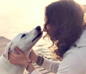 Los animales: ¿seres con espíritu?
