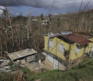 Ningún huracán podrá abatir la fiera boricua